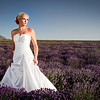 Amy Halford Bridals :